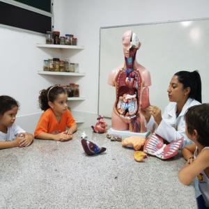 1_ano_mat_corpo_humano-300x300 Turmas da Educação Infantil mapeiam o corpo humano